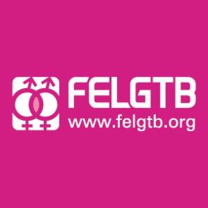 guia_LGBTI_directori-digital_guia-felgtb